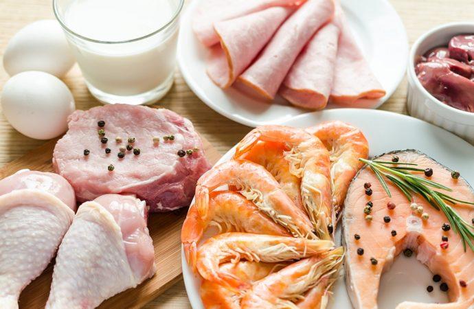Zawartość białka w typowych produktach (zwierzęcych i roślinnych)